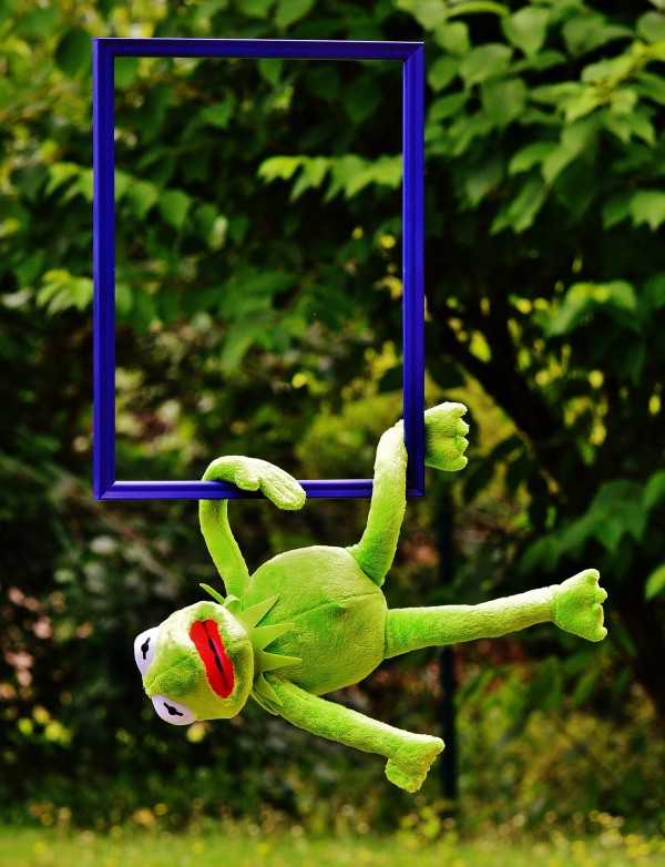 Blog posts need images to look good! ([Pixabay](https://pixabay.com/en/out-of-the-ordinary-kermit-frog-1523747/))