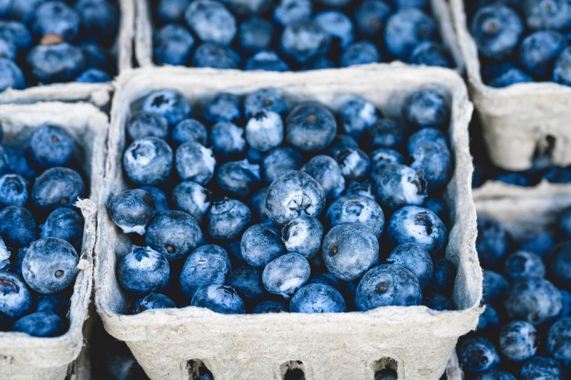 The forests are full of blueberries. So healthy! ([Pixabay](https://pixabay.com/photos/blueberry-blue-delicious-fruit-1326154/))